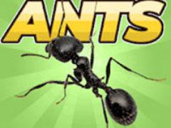Pocket Ants: Симулятор Колонии